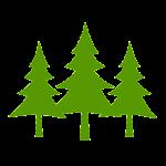 FOREST VERT